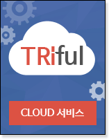 Triful Cloud 서비스